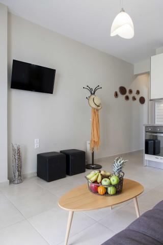 family apartments agni studios interior