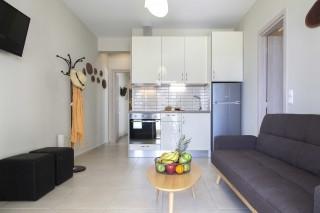 family apartments agni studios living room